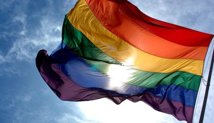 Resultado de imagem para Estatuto da Diversidade Sexual e de Gênero